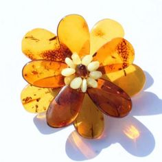 Buy Amber Jewelry | Baltic Amber Shop | Amber Jewellery Online AmberSOS