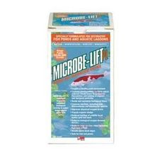 Fish & Aquatic Supplies Pl Bacterial Water Conditioner Quart by Mojetto. $30.99. PL BACTERIAL WATER CONDITIONER QUART. ECOLOGICAL LABS. MIC POND PL BACTERIA QUART. Microbe-lift pl bacterial water cond. 1 qt.