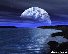 dreamies.de (5tm5ok8r6b7.jpg)