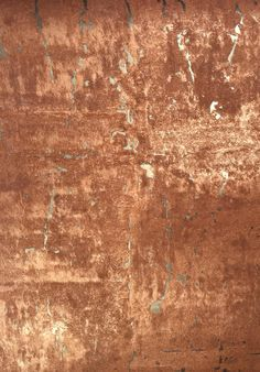 Amphora : AMP16427- Tektura Wallcoverings