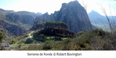 Serrenia de Ronda http://bobbovington.blogspot.com.es/2015/08/white-towns-of-andalusia-pueblos.html