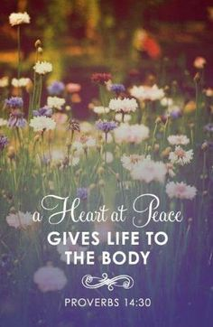 ❥ Proverbs 14:30~ a heart at peace