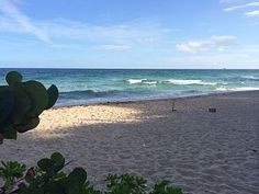 Ocean Manor Beach Resort Studio on the beach.Vacation Rental in Fort Lauderdale from @homeaway! #vacation #rental #travel #homeaway