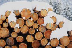 Genug Holz für eine warme Stube