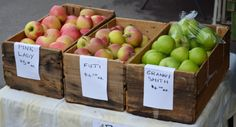 The Barossa Farmers Market. Apples straight from the orchard.