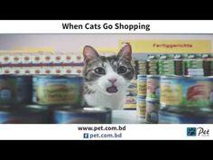 When Cats Go Shopping ... - YouTube