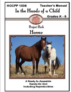 For horse-crazy children out there who would love to learn more about this beautiful creature - In The Hands of a Child Horses lapbook.