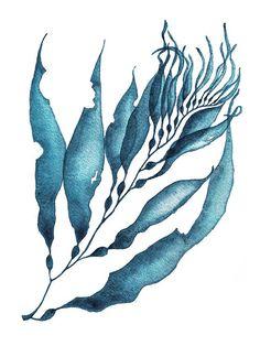 sea coral Sea Coral Print SetCoral PrintSet Of 4 PrintsTeal Blue Coral Painting, Coral Watercolor, Watercolor Artwork, Pintura Coral, Desgin, Sea Plants, Coastal Wall Art, Sea Art, Wall Art Prints