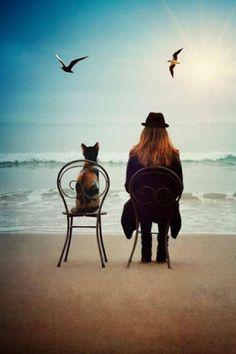 Η ΔΙΑΔΡΟΜΗ ®: Τι είδα στην παραλία