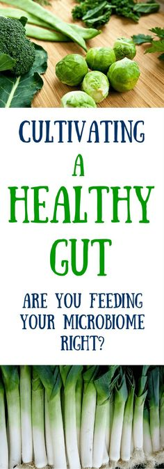 Research continues to point to the critical role a healthy gut plays in overall health. Are you feeding your microbiome the right stuff? Click to read more or pin to save for later.