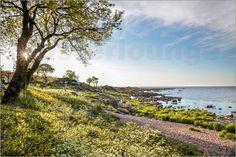 Christian Müringer - Küste von Bornholm bei Melsted, Dänemark