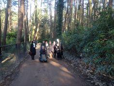 Prediken int bosgebied bij de bungalows ,ikke in de rolstoel Bungalows, Country Roads, Bungalow, Ranch Homes