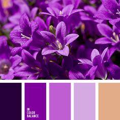 Цветовая палитра №3424