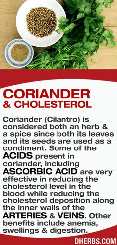 Coriander (Cilantro) is considered both an herb & a spice since both its leaves and its seeds are used as a condiment. Some of the acids present in coriander, including ascorbic acid are very effective in reducing the cholesterol level in the blood while reducing the cholesterol deposition along the inner walls of the arteries & veins. Other benefits include anemia,   swellings & digestion.