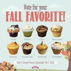 wedding cake flavors for fall 1000 images about caramanda s cupcakes on 22643