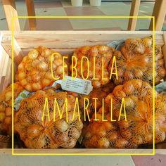 Cebollas amarillas de Agralia del Principado. #huerta #cebollas #agralia #agraliajardin.com #asturias Garden Centre, Onions, Vegetable Garden, Yellow