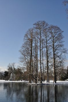 Spring Grove Cemetery in Winter (by Cincytwboy). http://www.thefuneralsource.org/cemohhamco-001.html