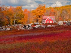 Beautiful Autumn Barn Photos - Fall Foliage Pictures - Country Living - John Orcutt/Getty