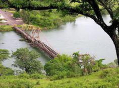 Ribeirão Claro e sua Ponte Pênsil - #NossoParaná - Ponte Alves Lima é do tipo pênsil e esta localizada entre as cidades de Ribeirão Claro, no estado do Paraná e Chavantes, em território paulista, cruzando o extenso Rio Paranapanema.