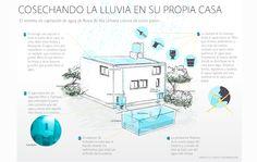 Faena Sphere | Cosechando la lluvia: la isla urbana de Enrique Lomnitz