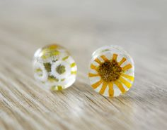 plugs with real flowers and white lace flower plugs real flower plugs gauge…