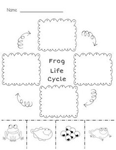 this freebie includes two frog life cycle cut and paste activities and two posters the two. Black Bedroom Furniture Sets. Home Design Ideas