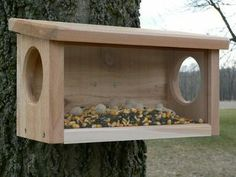 Squirrel Dine-In Feeder Hole Size: Size: W x D x Weight: 4 lbs Squirrel Feeder Diy, Squirrel Home, Wood Bird Feeder, Bird House Feeder, Bird Feeders, Outdoor Projects, Wood Projects, Bird House Kits, Bird Houses Diy