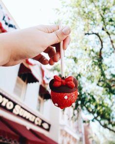 Disney Snacks, Disney Food, Disney Recipes, Disney Stuff, Epcot, Disney Magic, Walt Disney, Disneyland Food, Disneyland Photos