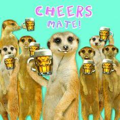 Otter House - Cheers mate kaart (Voorzijde) joa of ben?!