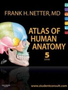 If you are looking for a pharmacology book then download one of atlas of human anatomy 5th edition free ebook online fandeluxe Images