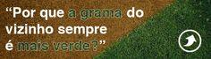 Por que a grama do vizinho sempre é mais verde? - http://marketinggoogle.com.br/2014/04/04/por-que-a-grama-do-vizinho-sempre-e-mais-verde/