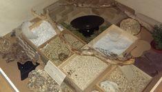 Auslauf - Lady Milka's Paradies (Achtung, viele Bilder) - Ausläufe - Bau, Einrichtung und Vorstellung - www.das-hamsterforum.de