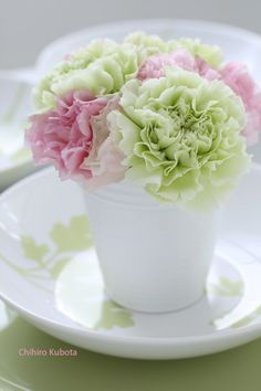Carnations... hmm.. they can actually be pretty....