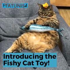 Plush Creative Fish Shape Cat Toy Pet Gifts Catnip Stuffed Pillow
