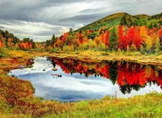 Kancamagus Highway North Conway, New England grass sky outdoor reflection water Nature leaf River autumn nature reserve vegetation wilderness Lake wetland mount scenery red pond tundra reservoir landscape bog tarn state park national park mountain bank tree meadow surrounded hillside lush