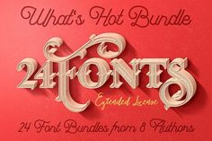 What's Hot Bundle vol.10 - 24 Fonts by JumboDesign on Creative Market