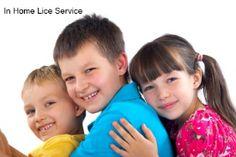 In Home Lice Removal Service Virginia Beach