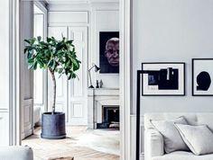 déco minimaliste, pot de fleur, portrait et cheminée murale, sol parqueté