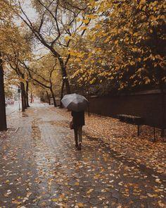 a stroll on a rainy day