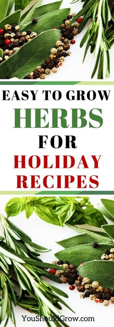 Add fresh, home grown herbs to your holiday meals…