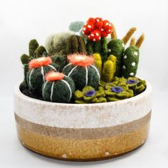 This Felter Skelter post by Zoe Williams showcases the cactus gardens of needle felt artist Sarah Mandell.