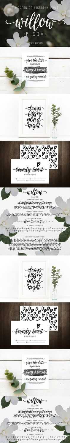 Modern calligraphy font Willow Bloom. Script Fonts. $16.00