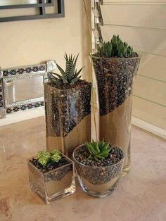 glass succulent plants (29)