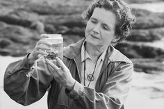 "Rachel Carson's bombshell 1962 book, Silent Spring, inspired the formation of environmental protection groups.  ""Every once in a while in the history of mankind, a book has appeared which has substantially altered the course of history,"" said Sen. Ernest Gruen­ing about Silent Spring a year after it was published. He was right."