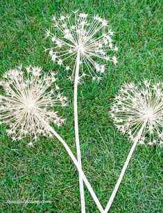 how to create gorgeous metallic painted dried giant allium flowers, crafts, gardening, how to, painting Allium Flowers, Dried Flowers, Easiest Flowers To Grow, Diy Jardin, Wood Plant Stand, Metal Flowers, Metal Garden Flower, Black Flowers, Fake Flowers