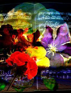 Neu in meiner Galerie bei OhMyPrints: Florale T�ne