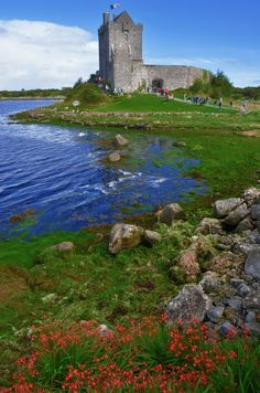 Dunguaire Castle, Galway / Ireland (by Kevin.Donegan).