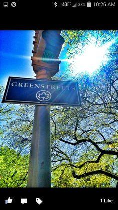 Goals of green - ©LensofLouis ©LS Taylor; Website:  http://i-shot-it.com/Photos/lens_of_Louis ; Instagram: @1lens ; Facebook: #LensofLouis
