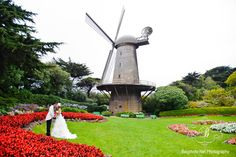 San Francisco Gold Gate Park Wedding- I saw a wedding here when I was a kid, its never left my mind.