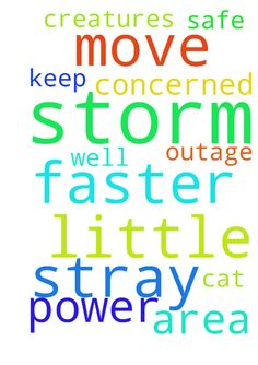 Storm -  	Please Lord,    	Please let the storm move through the area a little faster. I'm very concerned for a power outage as well as the stray cat. Please keep all your creatures safe.    	Amen  Posted at: https://prayerrequest.com/t/3M1 #pray #prayer #request #prayerrequest